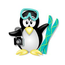 Penguin Vacationing Royalty Free Stock Photos
