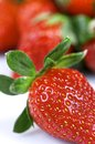 Free Strawberries Stock Images - 29940364