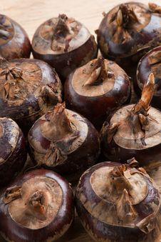 Free Water Chestnut Stock Image - 29940851