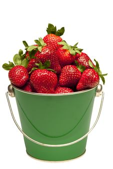 Strawberries In Pail Close Up Isolated