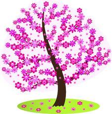 Free Flowering Tree. Stock Image - 29953061