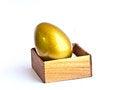 Free The Golden Easter Egg Stock Photos - 29967243
