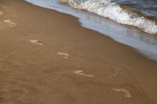 Free Footprints Along The Shore Royalty Free Stock Photo - 29960085