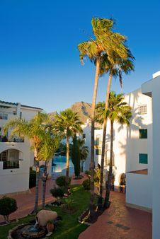 Free Tenerife, Canary Islands Royalty Free Stock Photos - 29967468
