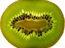 Free Kiwi Stock Image - 29967961