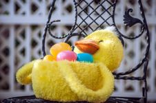 Free Easter Duck Basket Royalty Free Stock Photos - 29976408