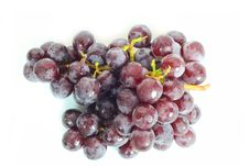 Free Red Grape Stock Images - 29981884
