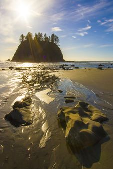 Seastack Sanctuary At Low Tide Second Beach Olympic National Park Stock Images