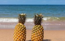 Two Pineapples On The Beach. Royalty Free Stock Images