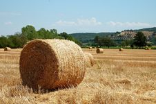 Free Hay Bale Landscape Royalty Free Stock Photo - 29988425