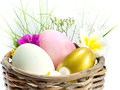 Free Easter Egg In The Basket Stock Photo - 29998350