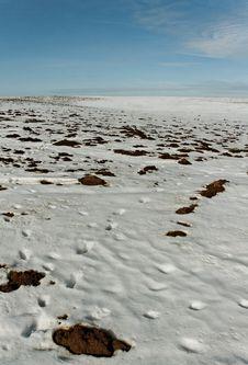 Free Snowy Field. Stock Photo - 29992800