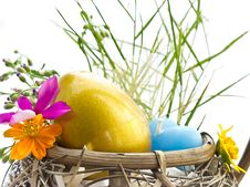 Free Golden Easter Egg Stock Photo - 29994940