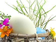 Easter Egg In The Basket Royalty Free Stock Image