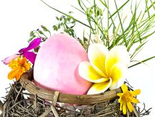 Easter Egg In The Basket Royalty Free Stock Images