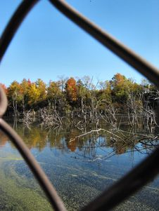 Free Viewing Autumn Through A Fence Stock Photos - 30203