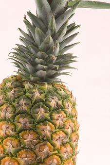 Free Pineapple Detail Royalty Free Stock Photography - 34267