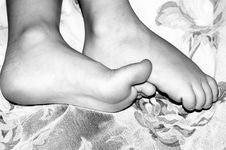 Free Tiny Feet Stock Photography - 37012