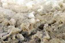 Dirty Sea Foam Stock Image