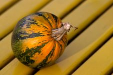 Free Striped Pumpkin Stock Photography - 301412