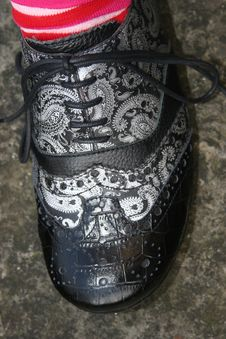 Free Posh Shoe Stock Image - 303331