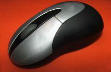Free Mouse Stock Photo - 306400