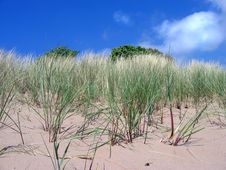 Free Sandy Dune Stock Photos - 308083