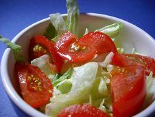 Free Tomato Salad Royalty Free Stock Image - 309946