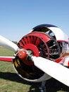 Free Airplane Engine Stock Image - 3000621