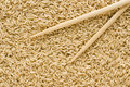 Free Brown Rice And Chopsticks Stock Images - 3006834