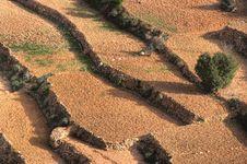 Free Farmland In Morocco Stock Photos - 3001203