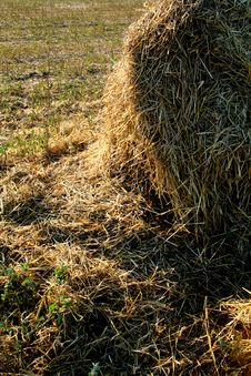 Broken Hay Bale On The Field Royalty Free Stock Image