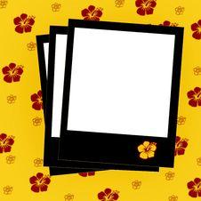 Free Polaroids Photos Stock Photography - 3003992