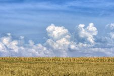 Free Dramatic Clouds Over The Field Royalty Free Stock Photography - 3009237