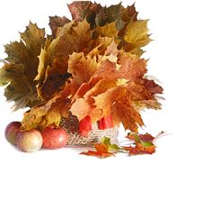 Free Bouquet Of Autumn Royalty Free Stock Photography - 30025617