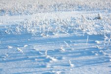 Free Winter Abstract Background Stock Photography - 30042662