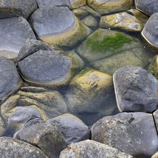 Free Close Up View Of Giant S Causeway Stock Image - 30047191