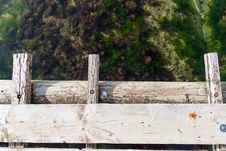 Free Standing On A Bridge Royalty Free Stock Photos - 30056928