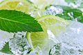 Free Lime And  Mint Royalty Free Stock Photos - 30066778