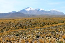 Free Landscape Of National Park Of Lauca Stock Images - 30061064