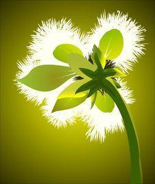 Free Flower Stock Photo - 30062670