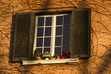 Free Decorated Window Royalty Free Stock Photo - 30067225