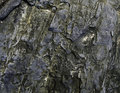 Free Wet Stone Sea Coast Stock Photo - 30071900