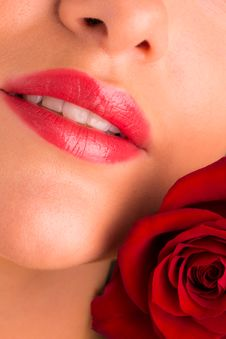 Free Beautiful Young Female With Rose Stock Image - 30084561