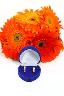 Two Gold Wedding Rings With A Bouquet Of Orange Gerberas Stock Images