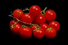 Free Cherry Tomatoes Stock Photography - 30091062