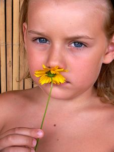 The Child With Flower Royalty Free Stock Image