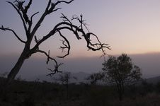 Free African Sunset Stock Images - 3011174