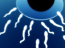 Free Sperm 9 Royalty Free Stock Photography - 3011847