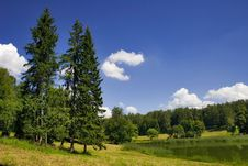 Free Landscape With Trees And Pond Stock Photo - 3013690